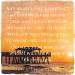 Exodus 33:19