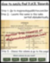 DAR lineage books.JPG