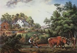 AMERICAN FARM SCENE