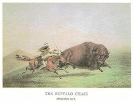 THE WEST - BUFFALO CHASE
