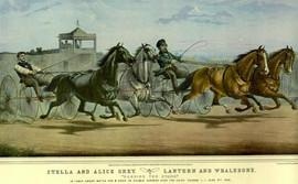 STELLA & ALICE GREY 1855