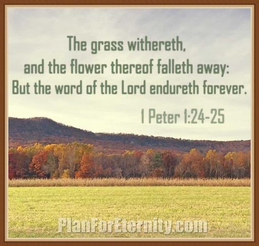 God's Word endures forever