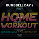 DUMBBELL WEEK 13 DAY 1.png