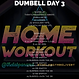 THE LAB PANAMA GYM DELIVERY DUMBELL WORKOUT DAY 3