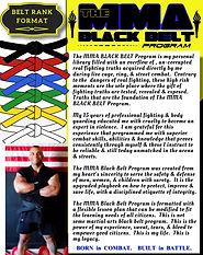 The MMA Black Belt Program Treasure.jpg