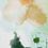 "Thumbnail: n°64 ""Smoothie clémentine"""