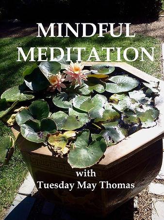 mindful meditation.jpg