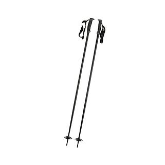 Ski-poles.png