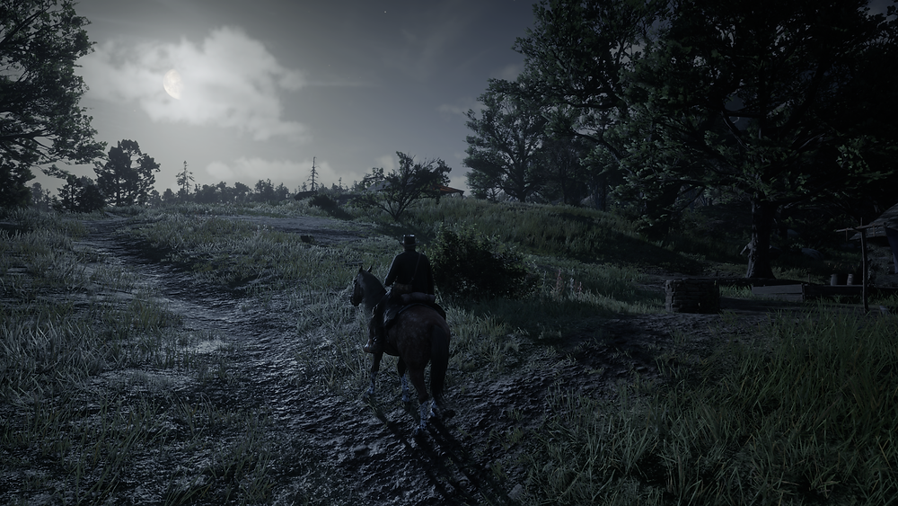 I get that games are pretty these days... but RDR2 is in different league.