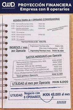 CWD-MX-proyeccion_financiera-negocio-8 O