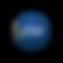 logo-pse-300x300.png