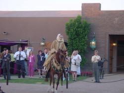 N Los Cedros Horse in Arabian Costume2