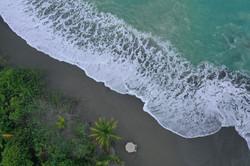 South Pacific coast 2