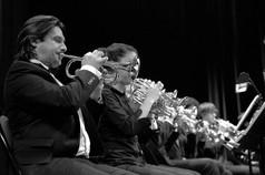 Un Concert presque parfait - Cornet