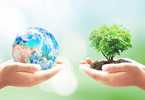 earth-tree.jpeg