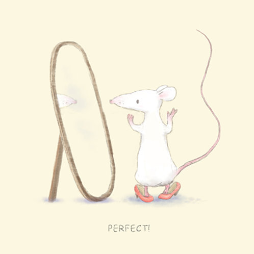 Mouse series 4 - Perfect