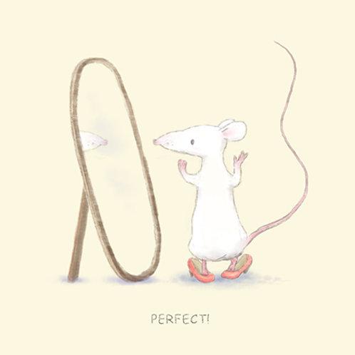 סדרת העכברים - עכברה