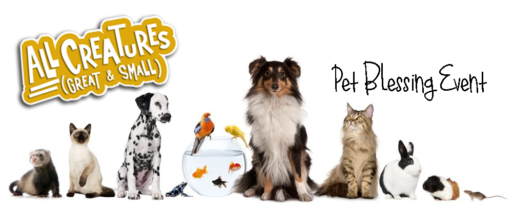 Pet Blessing 2015