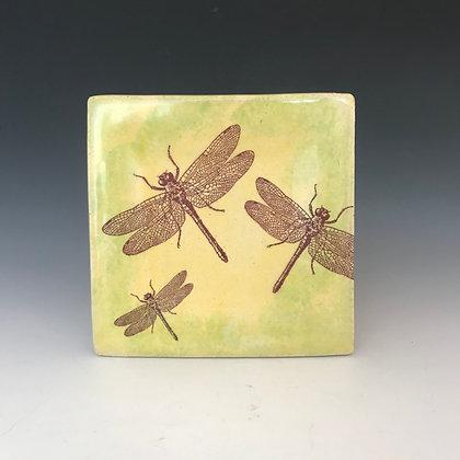 dragonfly tapas #2