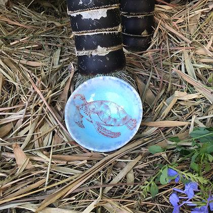 blue turtle bowl