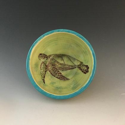 swimming turtle bowl