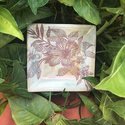 hibiscus tapa