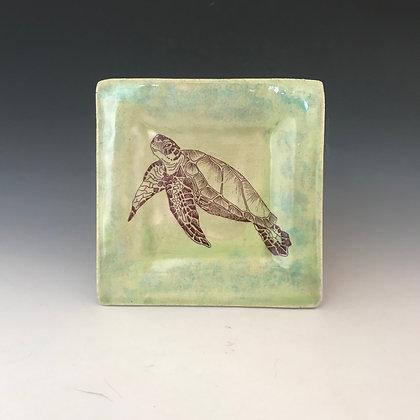 turtle tapa