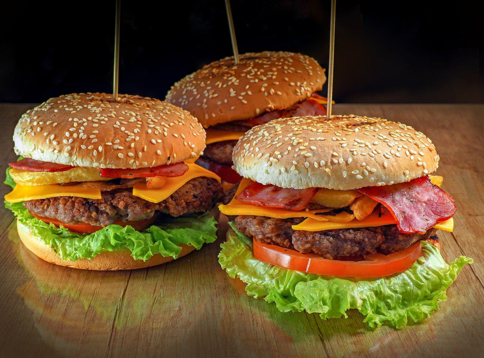 burger-4953465_1920