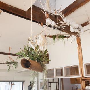 ウエディング装飾 多肉植物ディスプレイ
