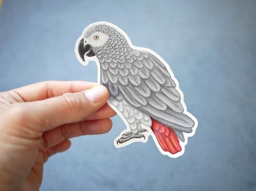 Silverpasta African Grey parrot vinyl sticker 10cm