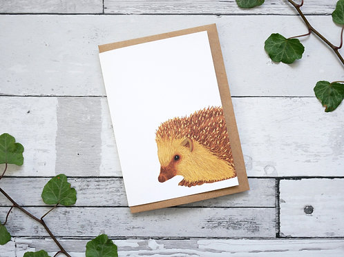 Silverpasta illustrated animal greetings card made from recycled paper featuring a hedgehog with plastic free packaging