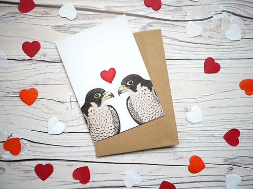 Illustrated valentine's day card featuring two peregrine falcons by Silverpasta Crafts