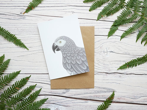 Illustrated african grey parrot greetings card made from 100% recycled card and plastic-free wrapper