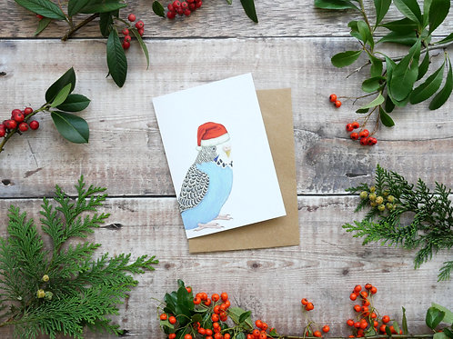 Illustrated blue budgie Christmas card made from recycled paper and eco friendly plastic-free wrapper