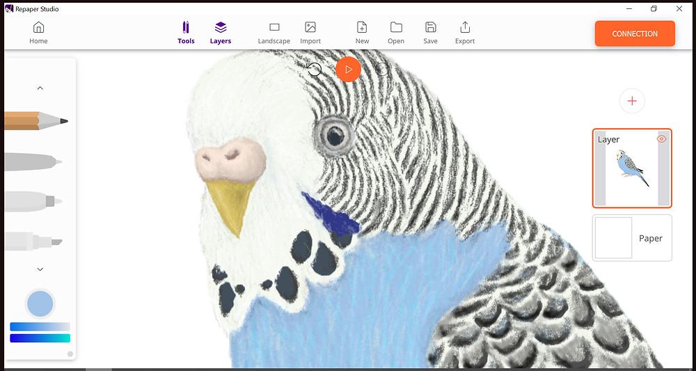 ISKN Repaper Studio drawing a budgie