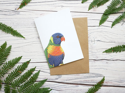 Illustrated rainbow lorikeet recycled greetings card with plastic free shipping