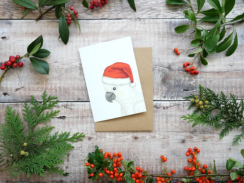 Illustrated sulphur cockatoo wearing santa hat Christmas card made from recycled paper and eco friendly plastic-free wrapper