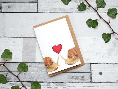 Silverpasta illustrated valentine's card recycled paper two snails with a red heart plastic free packaging