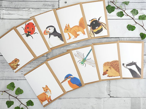 Set of ten Silverpasta british wildlife illustrated recycled greetings cards ladybird puffin hedgehog bee squirrel fox