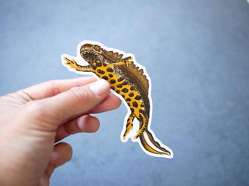 Silverpasta great crested newt amphibian vinyl sticker 10cm