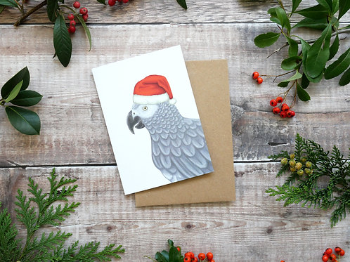 Illustrated african grey wearing santa hat Christmas card made from recycled paper and eco friendly plastic-free wrapper