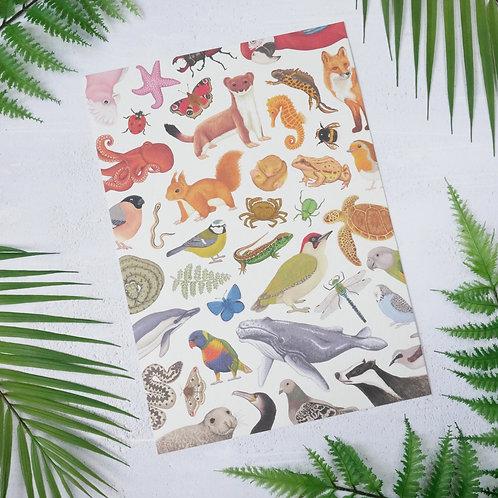 Limited Edition Rainbow Wildlife Art Print