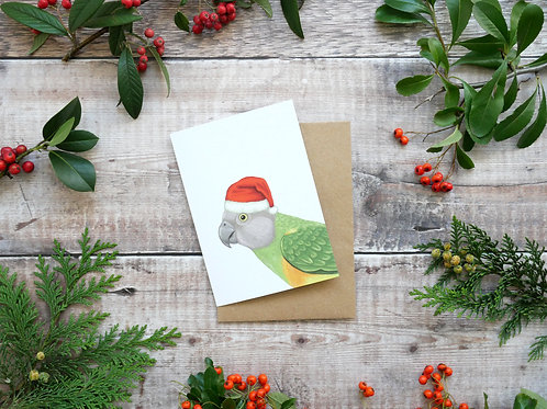 Illustrated senegal parrot wearing santa hat Christmas card made from recycled paper and eco friendly plastic-free wrapper
