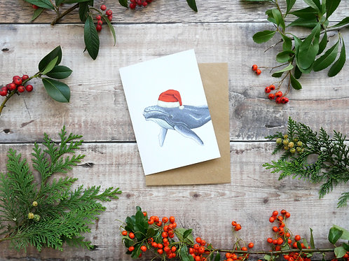 Illustrated humpback whale wearing a santa hat Christmas card made from recycled paper and eco friendly plastic-free wrapper