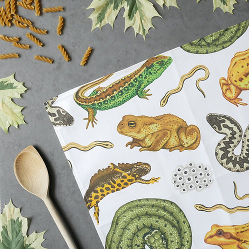Silverpasta Cotton tea towel featuring british reptiles and amphibians newt snake frog toad lizard
