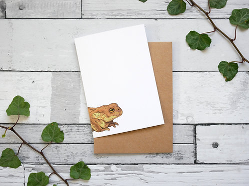Silverpasta illustrated animal greetings card made from recycled paper featuring a common toad with plastic free packaging