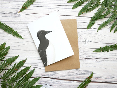 Illustrated guillemot common mure greetings card made from 100% recycled card and plastic-free wrapper