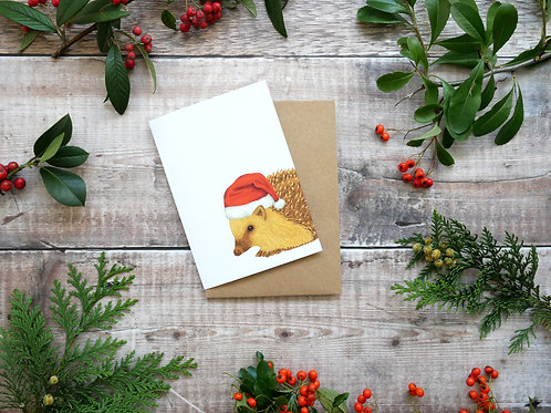 Illustrated hedgehog wearing santa hat Christmas card made from recycled paper and eco friendly plastic-free wrapper