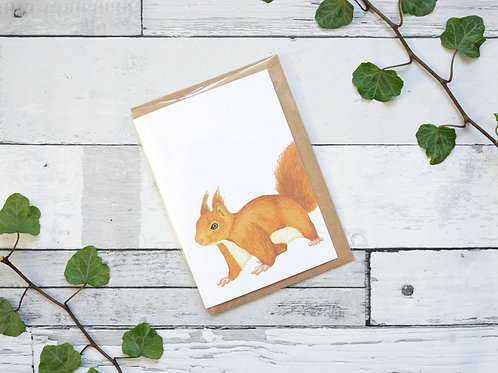 Silverpasta illustrated animal greetings card made from recycled paper featuring a red squirrel with plastic free packaging