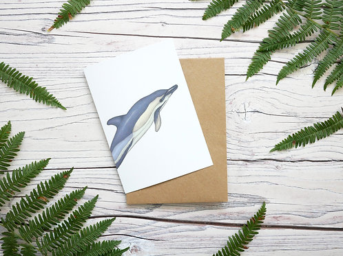 Illustrated common dolphin greetings card made from 100% recycled card and plastic-free wrapper